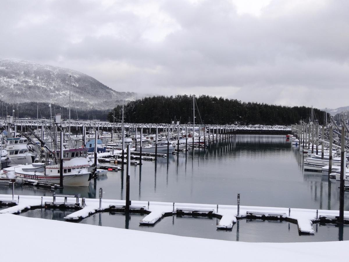 Alaska Day 3: 天阿! 錯過了前往Whittier的渡輪 (Cordova)