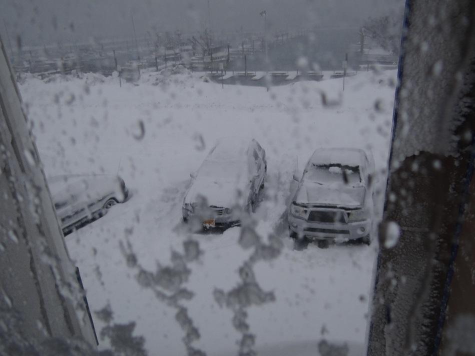Snowy day @Cordova