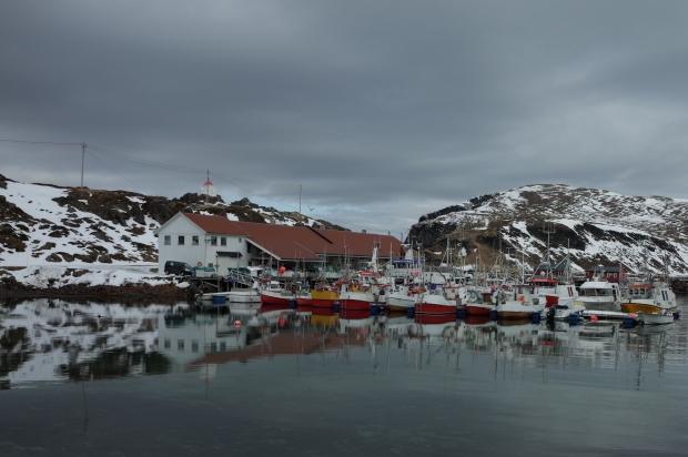 Kamøyvær港口漁船